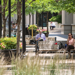 people relaxing during lunch time on sidewalk benches with trees and landscaping in background - near tellus luxury apartments in court house va
